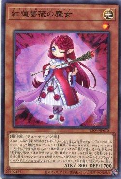 画像1: 紅蓮薔薇の魔女 LIOV-JP010(ノーマル)